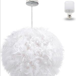Feathered ceiling light
